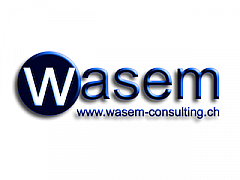 Logo_Wasem-Consulting.png